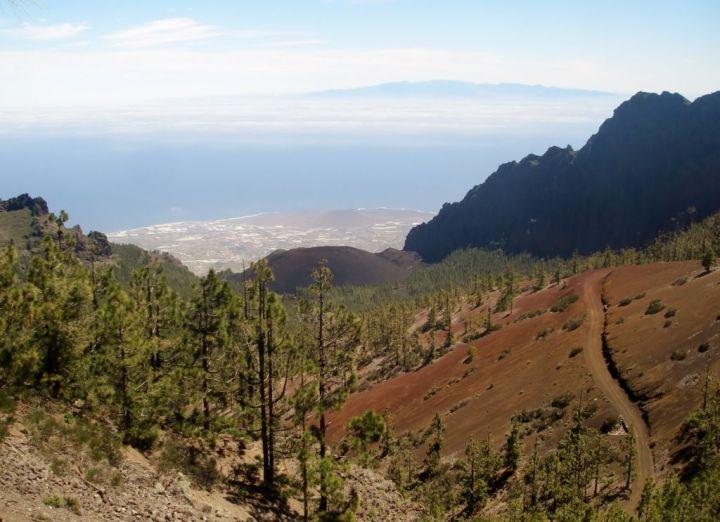 Tenerife   (368).JPG