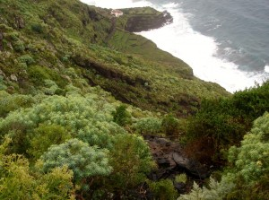 Steep Descent to the Sea