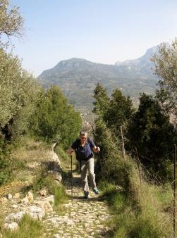 Cami de Rocafort