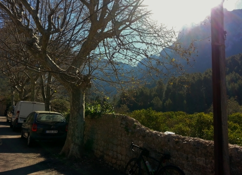 Just out of Soller, beautiful valley in the morning sun