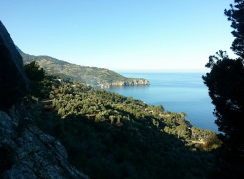 Superb coastal scenery on the way to Deia