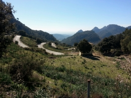 Coll de Soller, just the best cycling