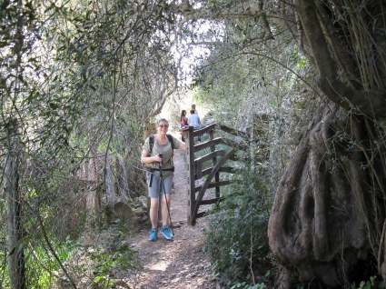 Shady paths and a cranky gate on the way to Port de Soller